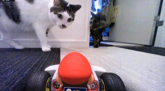 「マリオカートライブホームサーキット」何畳くらいの広さがおすすめ?やってる人教えて?まとめ